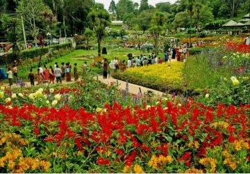 KODAIKANAL TOUR 2 NIGHTS 3 DAYS