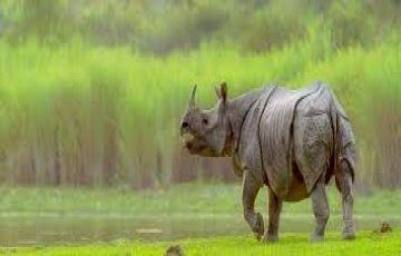 Assam Meghalaya & Arunachal Pradesh