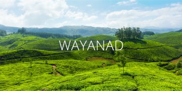 4N5D Honeymoon Tour Package of South India - Charming Coorg