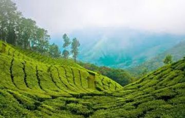 TPJ-36  Hill Stations of South India