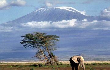 Fantastic Kenya & Tanzania