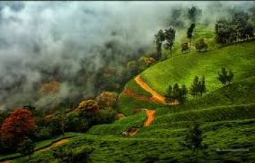 Kerala Tour with Madurai & Kodaikanal