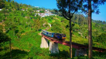 Ooty Budget Holiday