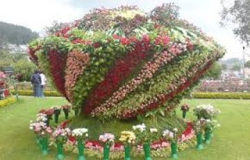 OOTY TOUR PACKAGE 6 DAYS 2 PERSON SPECIAL PRICE