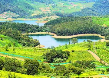 Tour package for Bangalore - Ooty - Mysore - Bangalore