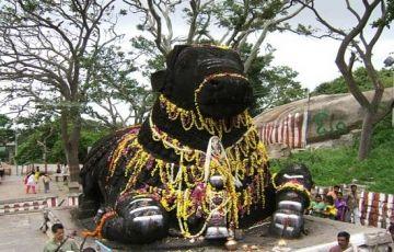 Bangalore Mysore, Ooty, Kodaikanal (6 nights /7 days)