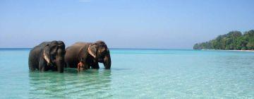 Amazing Andaman with Neil