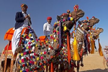 DELIGHT RAJASTHAN TOUR (7 Nights /8 Days)