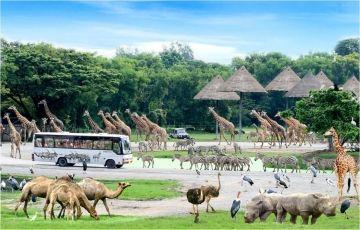 Grand Siem Reap & Bangkok Tour