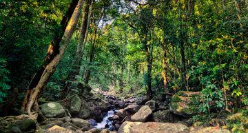 Guwahati-Shillong-Cherrapunji-Mawllilong-Shillong 4 Night /5