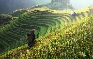 Golden Triangle of Eastern Himalayas