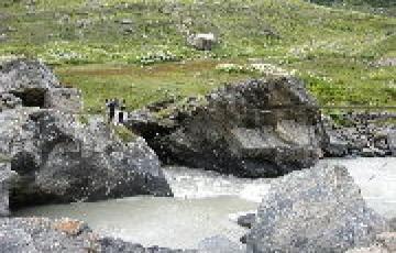 Kullu Manali by holiday yaari
