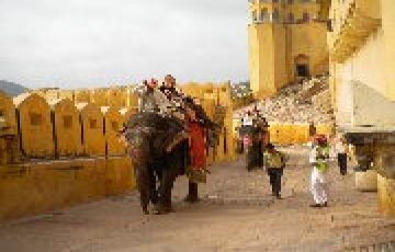 Golden triangle tour package 05 Days