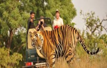 Rishikesh Rafting & Wildlife Tour