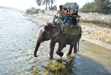 TPJ-14 Uttarakhand Honeymoon Tour