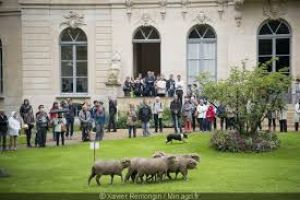 European Heritage Days 2019 in Paris and the Ile-de-France Region