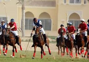 Dubai Polo Gold Cup Series
