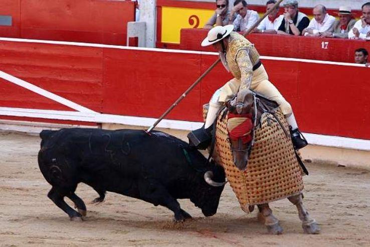 Bullfighting in Pamplona 2019 in Spain, photos, Festival, Carnival