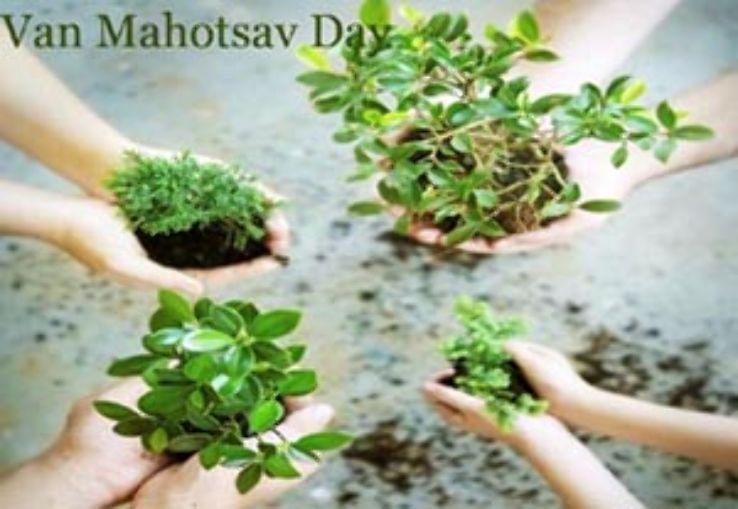 van mahotsav day essay