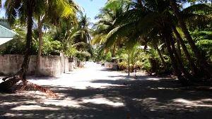 Alifushi
