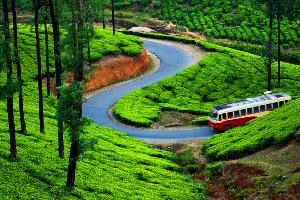Places to visit in Munnar in India
