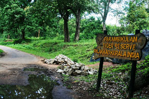 Parambikulam Tour Packages
