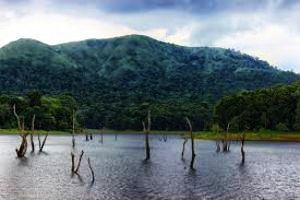 Best  Adventure places in Periyar in Kerala in India