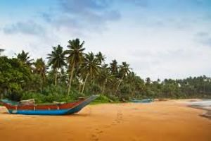 Kosgoda Tour Packages