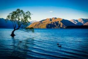 Wanaka Tour Packages