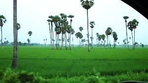 East Godavari District