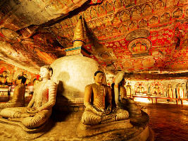 Dambulla Tour Packages