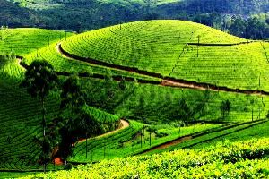 Places to visit in Darjeeling in India