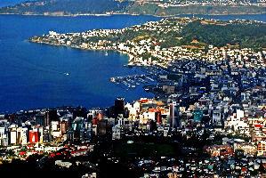 Wellington Tour Packages