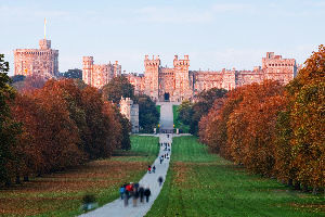 Windsor Tour Packages
