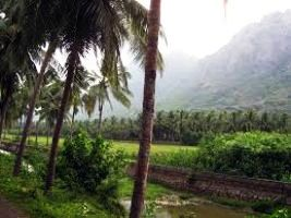 Nagercoil Tour Packages