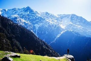 Dharamkot Tour Packages