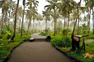 Kasaragod Tour Packages
