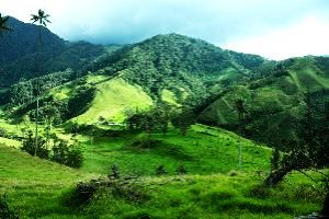 Igatpuri Tour Packages