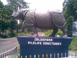 Jaldapara  Tour Packages