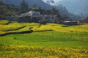 Tehri Garhwal Tour Packages