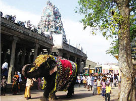 Palani Tour Packages