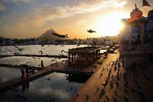 Best places for Temple in Pushkar in Rajasthan in India