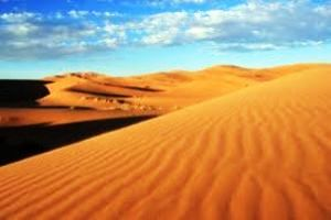 The Western Sahara Desert