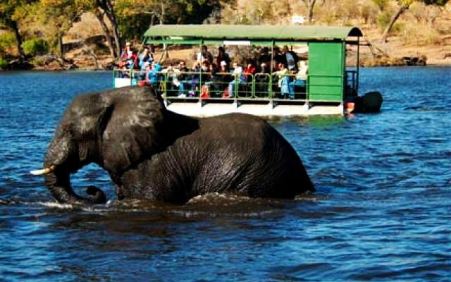 Chobe National Park Botswana Places To See In Chobe National Park Best Time To Visit