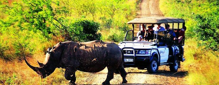 kaziranga-national-park-tour_1481098428p1.jpg