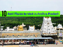 Mysore & Ooty Tour 03 Nights & 04 Days