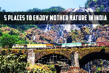 OOTY HILL TOUR FOR 5DAYS BEST PRICE