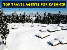 SHIMLA MANALI POCKET FRIENDLY TRIP 4 NIGHTS AND 5 DAYS