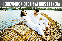 andaman 4days tour package
