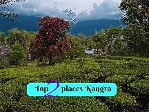 BEST DESTINATIONS FOR SOLO WOMEN TRAVELLERS IN KAZIRANGA